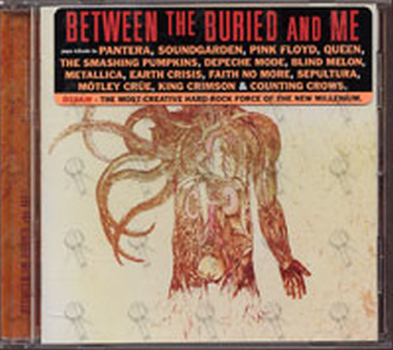 The anatomy of between the buried and me