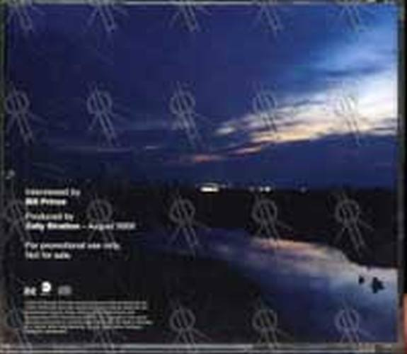 GRAY-- DAVID - 'A New Day At Midnight' Interview CD - 2