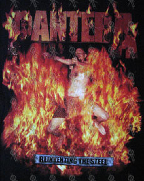 pantera reinventing the steel - photo #12
