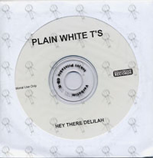 PLAIN WHITE T'S - Hey There Delilah - 1