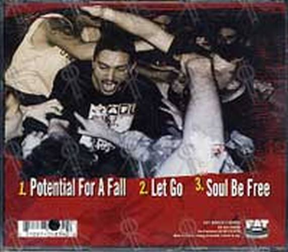 SICK OF IT ALL - Potential For A Fall - 2